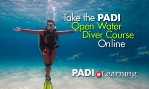 ... your holiday and start the PADI Open Water Diver Course online today