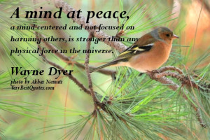 mind at peace, a mind centered and not focused on harming others, is ...