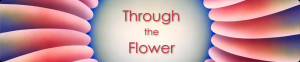 """Through the Flower"""""""