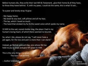 Poem-dog-photo.jpg