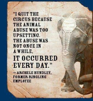 Circus abuse, unacceptable. no such thing as a humane animal circus.