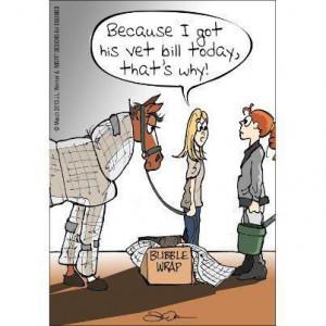 Bubble wrap your horse... cuts down on vet bills. :) #Equine #pets # ...