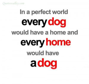 In A Perfect World Every Dog Would Have A Home
