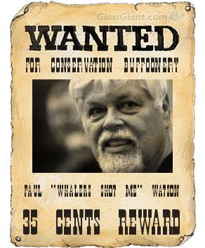 Paul Watson has fled Germany.