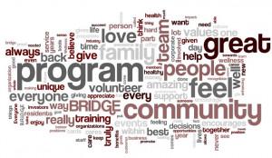 Employee Wellness Program Survey