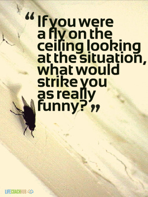 If You Were A Fly On The Ceiling Looking At The Situation