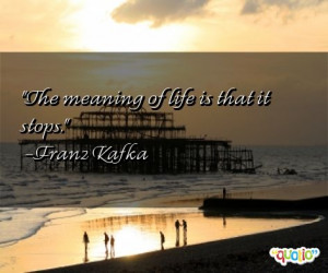 The meaning of life is that it stops. -Franz Kafka