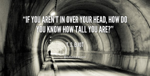 If you aren't in over your head, how do you know how tall you are ...