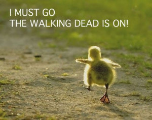 The Walking Dead Great Quotes