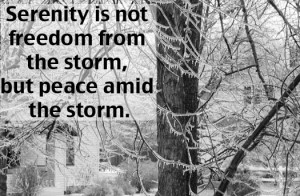 Photo Quote Friday – Surviving The Storm