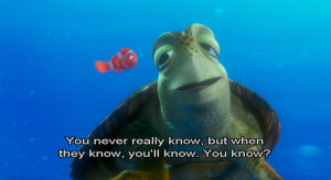 finding nemo, quote, quotes, turtle, turtles