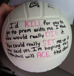 Sayings For A Volleyball Sign