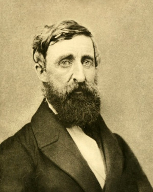 Henry David Thoreau Facts 9: curiosity about everything