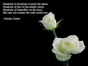 White Rose Quotes