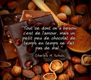 Nous sommes d'accord ! Et vous ? #chocolat #amour #citations
