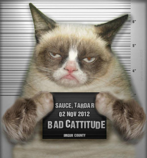 Finally, Your Time Has Come Grumpy Cat!