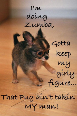 zumba dog ... lol!!