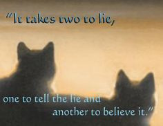 Warrior Cat Quote. Anyone else love this series as a kid ...