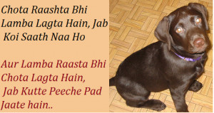 funny sayings life hindi for facebook