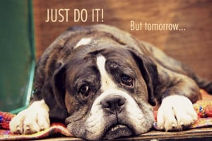 Funny quotes on laziness and being lazy