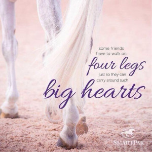 Four legs and big hearts