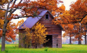 Old Barn in the Fall