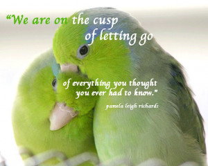 "... Go Of Everything You Thought You Ever Had To Know "" ~ Birds Quote"