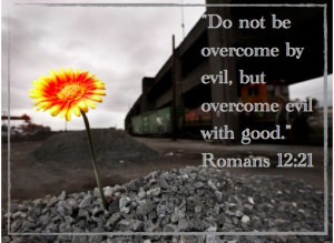 Do not be overcome by evil, but overcome evil with good.