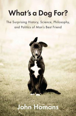 What's A Dog For? The Age-Old Connection With Humans