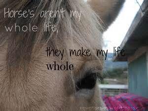 quotes | Horse Crazy