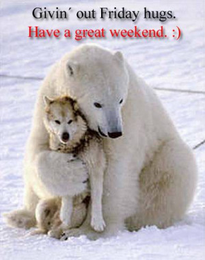 friday hugs quotes cute animals quote friday wolf days of the week ...