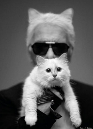 Choupette Lagerfeld: World's Classiest Cat