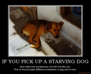 IF YOU PICK UP A STARVING DOG