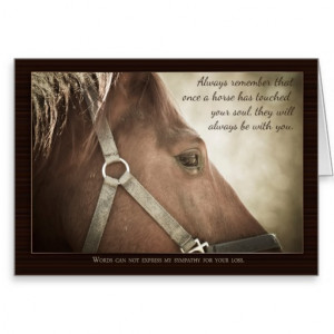 horse_sympathy_with_nice_words_greeting_cards ...