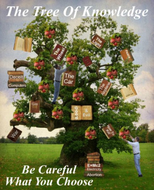 tree of knowledge, abortion, choices quotes