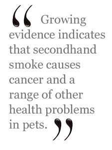 "The evidence is striking,"" said Steven Hansen of the ASPCA's ..."