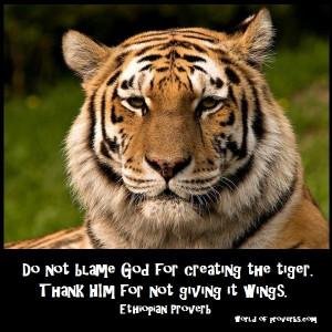 - Famous Quotes: Do not blame God for having created the tiger ...