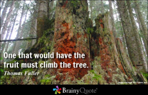 Rock Climbing Quotes images above is part of the best pictures in http ...