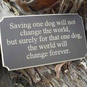Rescue Dog Quotes