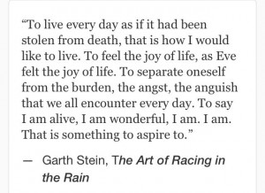 Racing Quotes And Sayings Quotes sayings