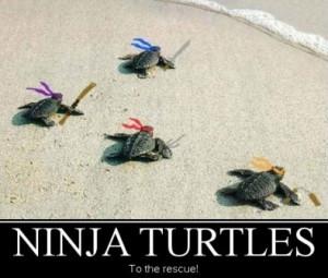 Ninja Turtles!!!