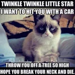 Grumpy Cat Memes Titanic