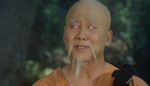 Master Po in Kung Fu