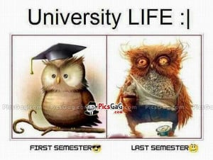 ... life university life quotes funny student university life funny quotes