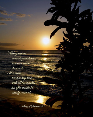song of solomon photo quotes song of solomon love song of solomon ...