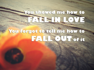 You Showed Me How to Fail In Love ~ Break Up Quote