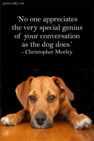 No One Appreciates The Very Special Genius Of Your Conversation As The ...
