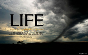 ... posted in quotes and tagged life quote quotes on june 27 2012 by post
