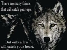Native American pictures and quotes to share on facebook | Wolf Quote ...