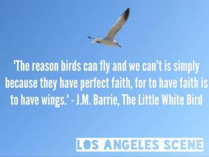 Inspirational Bird Quotes
